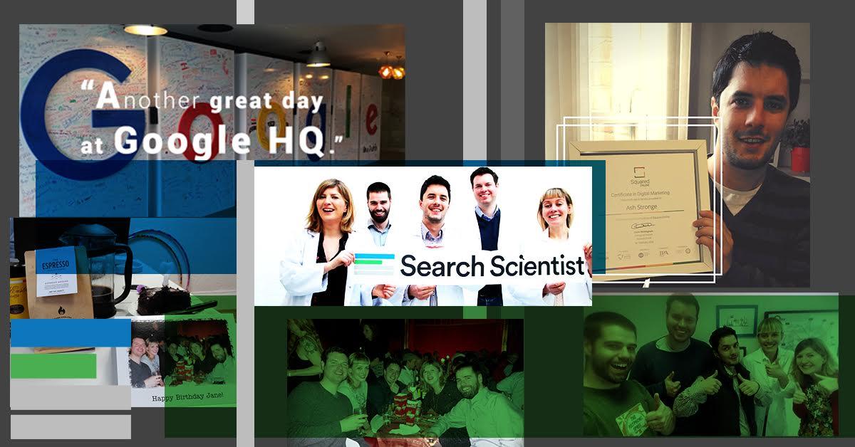 Search Scientist team collage
