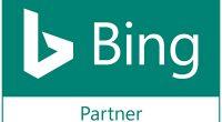bing ads partner belfast search scientist